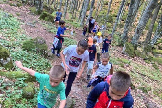 Лагер Чипровци 08.2020